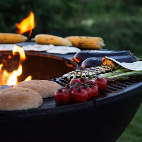 Picture of Firepit BBQ Grill